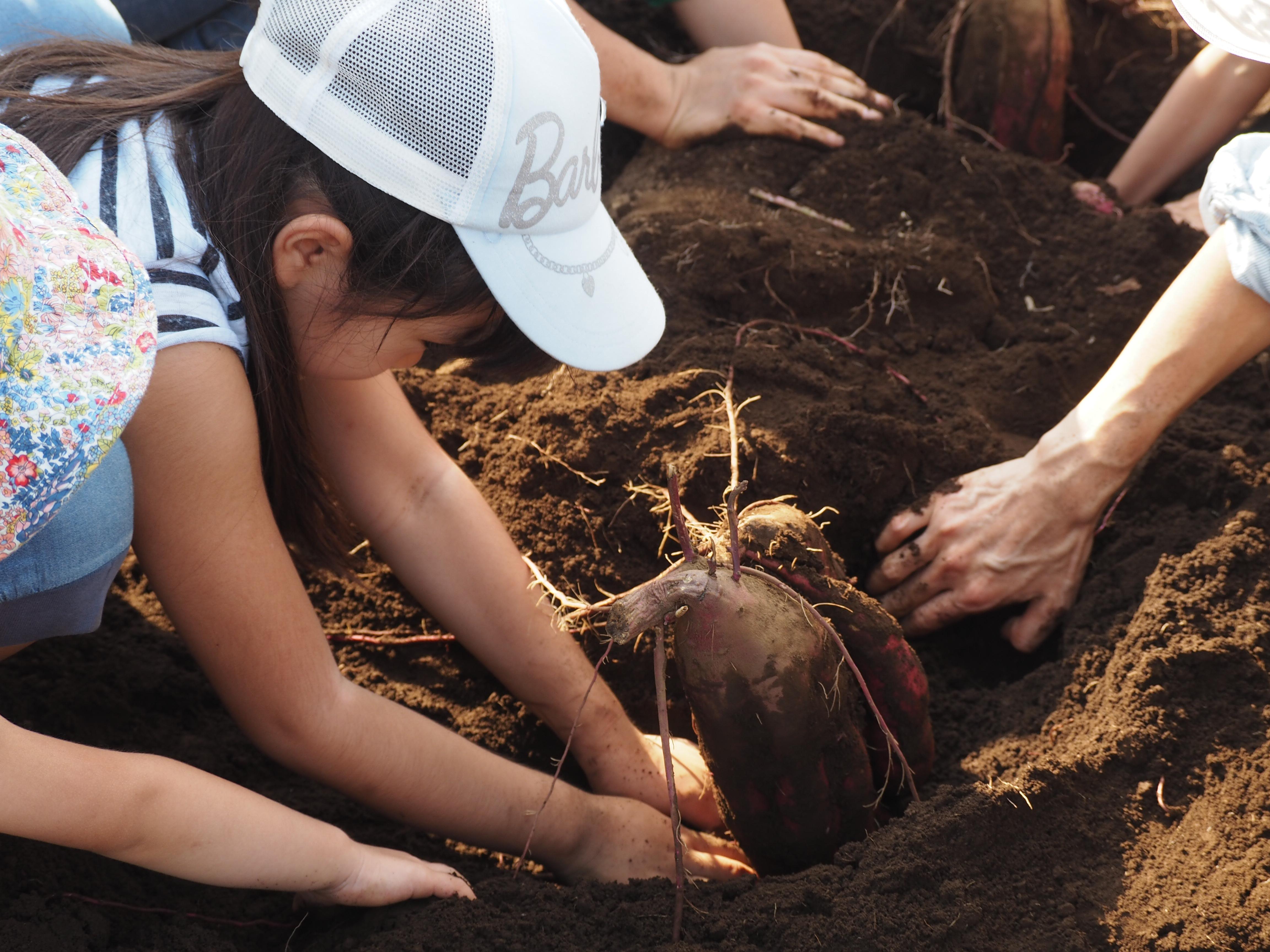 第10回イベント「オーガニック農家の収穫祭」